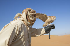 Falconer with a desert tawny Owl in a desert. Near Dubai stock photos