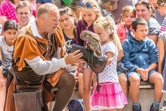 Falconer show casing his skills with an Eurasian eagle owl Stock Photos