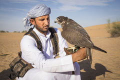 Falconer with a falcon in a desert near Dubai. Dubai, United Arab Emirates, March 3rd, 2016: Falconer with his falcon in a desert near Dubai stock images