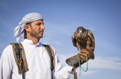 Falconer with a falcon in a desert near Dubai. Dubai, United Arab Emirates, March 3rd, 2016: Falconer with his falcon in a desert near Dubai royalty free stock photo