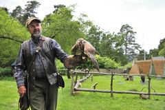 Falconer with Falcon falco cherrug . Royalty Free Stock Photos