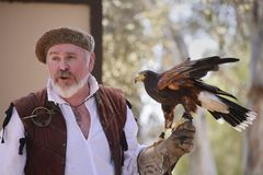Falconer. A Falconer give a presentation on falconry during the Koroneburg Renaissance Festival stock photo