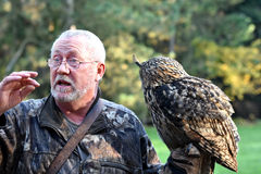 Falconer and raptor Stock Images