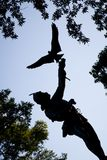 The Falconer Statue. Silhouette of `The Falconer` statue and surrounding trees in Central Park, New York City Royalty Free Stock Photos
