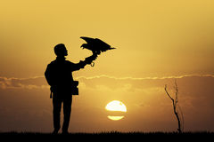 Falconer at sunset Royalty Free Stock Photos