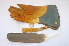 Falconry glove and feather Stock Photography