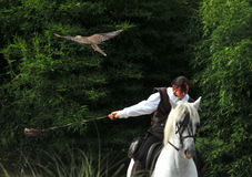 Falconry on horseback Royalty Free Stock Photos