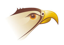 Falcons head Illustration in vector Royalty Free Stock Images