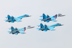 Falcons Rosja Zdjęcia Stock