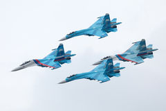 Falcons Of Russia Royalty Free Stock Image