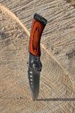 Falcowanie nóż dźgający w piłującego drewno fotografia royalty free