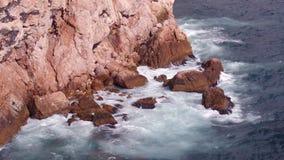 fale oceanu się fala pierwszoplanowe zdjęcie wideo