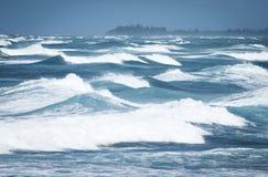 fale oceanu się fala pierwszoplanowe obraz royalty free