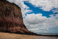 Falecia nel Brasile Fotografie Stock