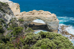 Falez formacje, Wielka ocean droga, Wiktoria, Australia Zdjęcia Stock