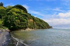 Faleza i czarna piasek plaża w Nowa Zelandia Zdjęcie Royalty Free
