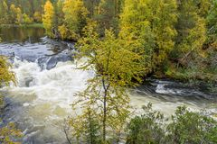 Faleza, kamienna ściana, las, siklawa i dziki rzeczny widok w jesieni, Zdjęcia Royalty Free