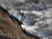 Faleza przy morzem bałtyckim między Ahrenshoop i Wustrow, western Pomerania, Niemcy Zdjęcie Royalty Free