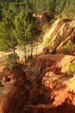 Falezy i sosny z lasem Zdjęcie Stock