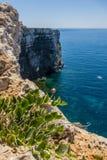 Falezy na Comino wyspie zdjęcie stock
