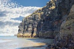 Falezy na dzikim atlantyckim sposobie przy niskim przypływem Zdjęcie Royalty Free
