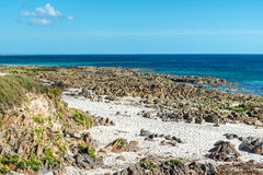 Falezy na plaży blisko Plouhinec (Francja) fotografia stock