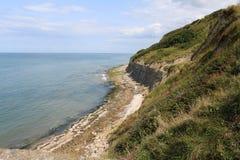 Falezy Normandy w Francja Obraz Royalty Free