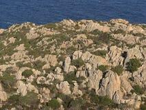 Falezy północny Sardinia Obraz Royalty Free