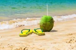 Falhanço de aleta e coco na praia em Buzios, Rio de janeiro imagens de stock