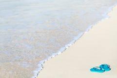 Falhanços da aleta em uma praia tropical imagem de stock