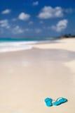 Falhanços da aleta em uma praia tropical imagem de stock royalty free