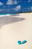 Falhanços da aleta em uma praia tropical fotografia de stock royalty free