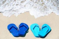 Falhanços da aleta na praia Imagem de Stock