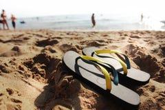 Falhanços da aleta na praia Fotos de Stock Royalty Free