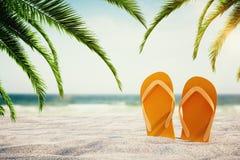 Falhanços de aleta alaranjados na praia ilustração royalty free