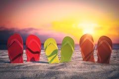 Falhanços de aleta brilhantes na praia ilustração do vetor
