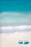 Falhanços de aleta em uma praia tropical Foto de Stock