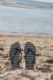Falhanços de aleta do verão na areia fotografia de stock