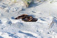 Falhanços de aleta na areia da praia Fotografia de Stock Royalty Free