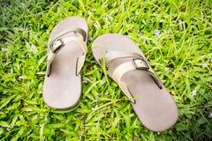 Falhanços de aleta na grama verde/close up Imagens de Stock Royalty Free