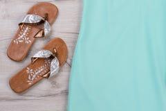 Falhanços de aleta prateados do verão Imagem de Stock