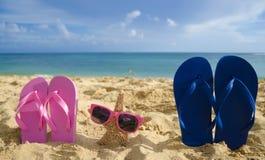 Falhanços e estrela do mar de aleta com os óculos de sol no Sandy Beach Imagem de Stock