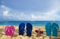 Falhanços e estrela do mar de aleta com os óculos de sol no Sandy Beach Imagens de Stock
