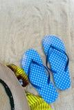 Falhan?os de aleta azuis, ?culos de sol no Sandy Beach com conchas do mar imagens de stock royalty free