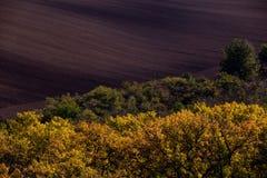 Faliści jesieni pola w Morawskim Tuscany, republika czech zdjęcia stock