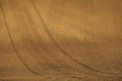 Faliści jesieni pola w Morawskim Tuscany, republika czech obrazy royalty free