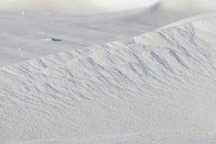 faliści dryfy z śniegiem fotografia royalty free