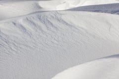 faliści dryfy z śniegiem obrazy royalty free