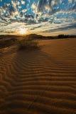 Falista wydmowa piasek pustynia przy zmierzchu lata słońcem Obraz Stock
