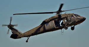 Falke des Schwarz-UH-60 Stockfotos